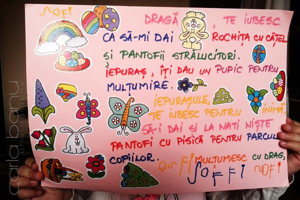 Scrisoarea Sofiei