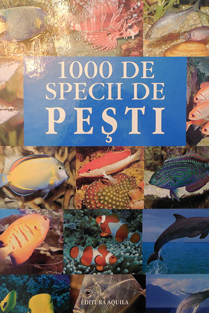 1000 Specii Pesti, Aquila