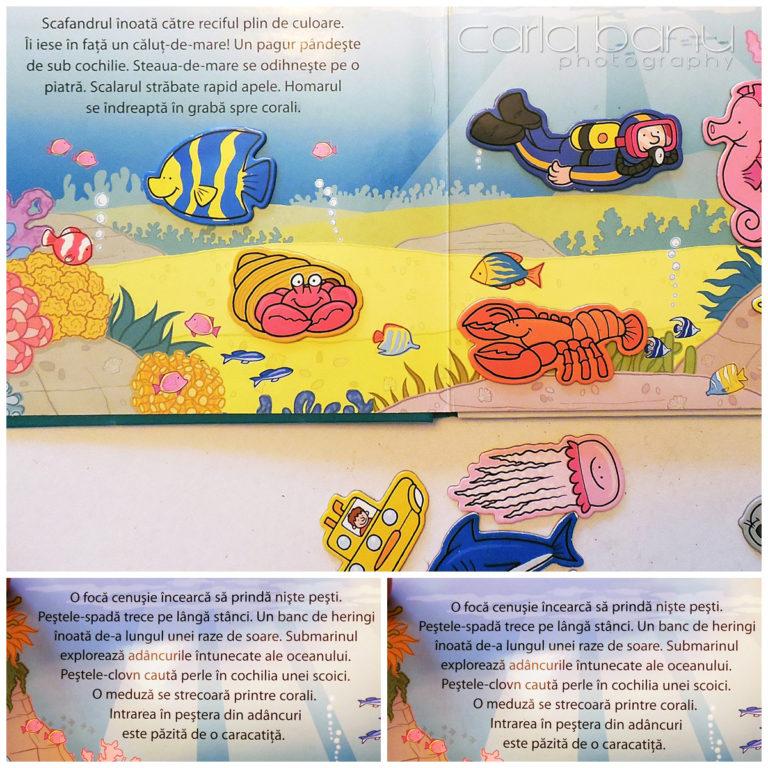 Animale de mare, carte magnetica