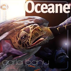 Coperta Oceane, Rao Insiders