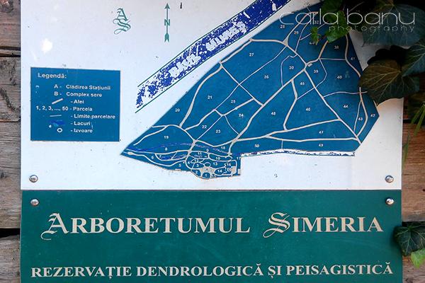 Arboretumul Simeria legenda parcele