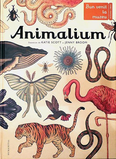 Animalium Humanitas