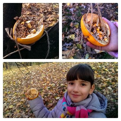 Hrănitoare păsări din coajă de portocală